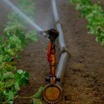 L'IdRA UB commemora el Dia de l'Aigua amb dues conferències sobre la gestió de sequeres i inundacions